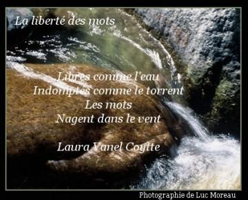 medium_la_liberte_des_mots.jpg