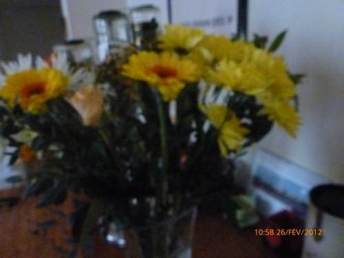 bouquets 26 FEVRIER 2012 001 hf (5).jpg
