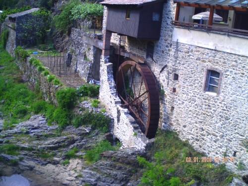 rivière arras 1 er mai 2009 026.jpg
