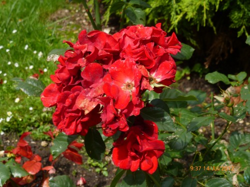 roanne -st quentin 13-14 juillet 2012 039.jpg