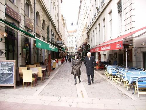 Rue_Maronniers_Lyon2_fr.jpg