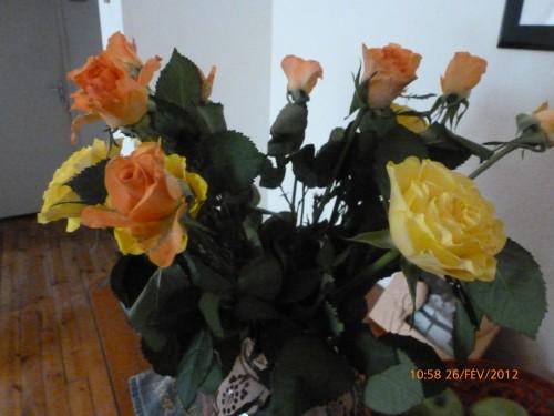 bouquets 26 FEVRIER 2012 001 hf (2).jpg