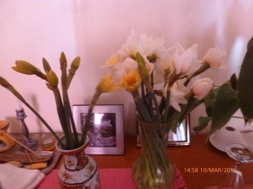 impots bouquet 10 mars 2013 008.jpg