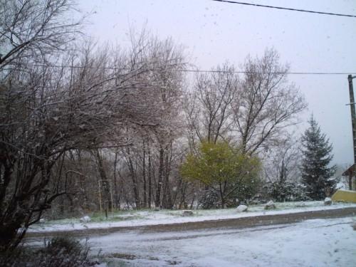 décembre 2009 012.jpg