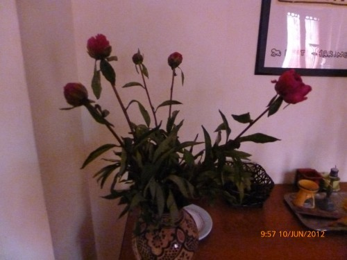 bouquet 10 juin 2012 001.jpg