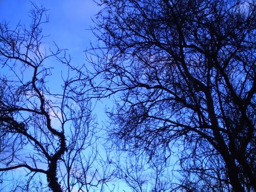 ciel st vallier 30 novembre 2009.jpg
