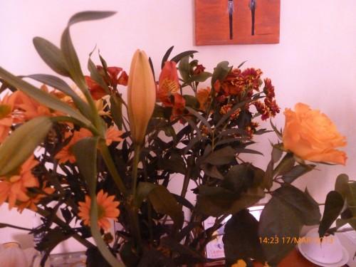 CDI bouquet 14 MARS 2013 003.jpg