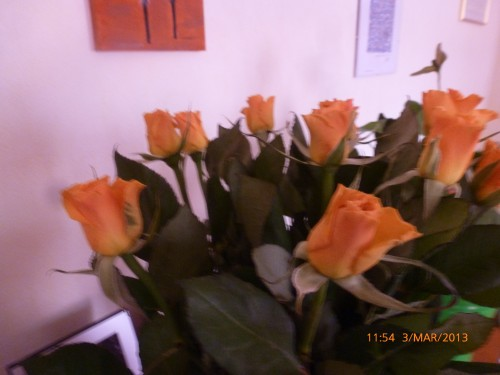 roses 3 mars 2013 001.jpg