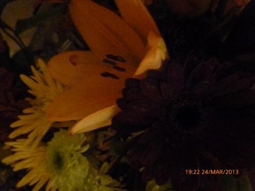 bouquets des 2 dimanche 17 et 24 mars 2013 006.jpg