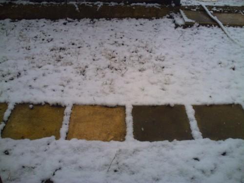 st vallier 7 mars 2010 008.jpg