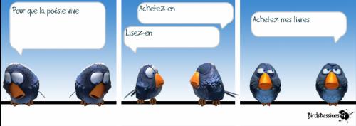 birds 2.png