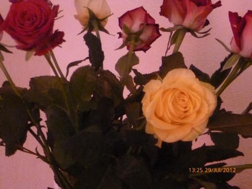 ste bouquet 28 juillet 2012 003.jpg