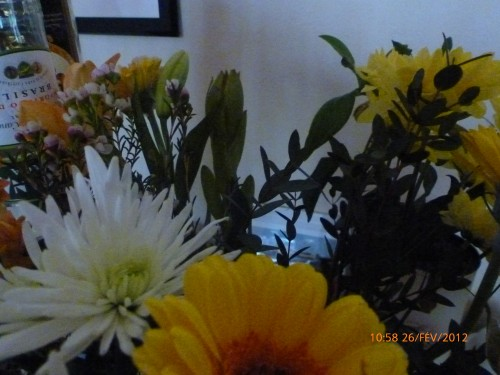 bouquets 26 FEVRIER 2012 001 hf (6).jpg
