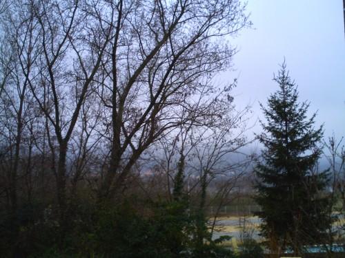 semaine du 25 janvier 2009 001.jpg
