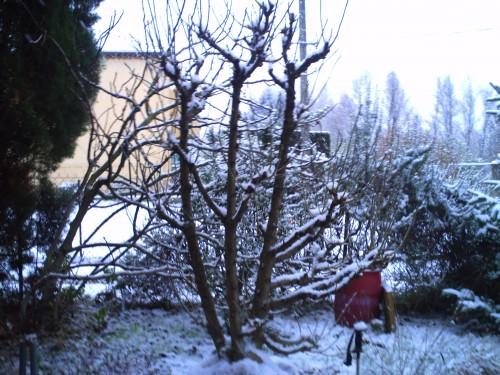 décembre 2009 005.jpg