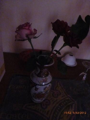 fleurs anni 2012 006.jpg