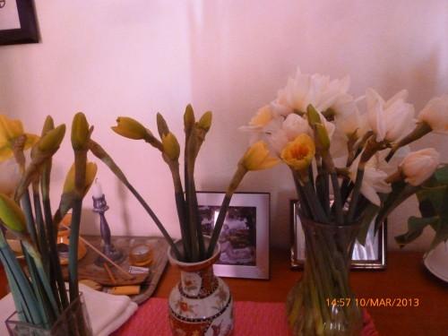 impots bouquet 10 mars 2013 007.jpg