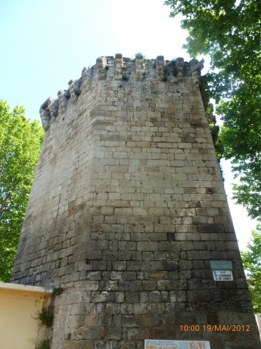 arles 19 mai 2012 034.jpg