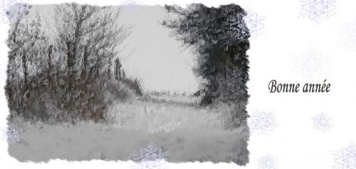 Bonne-annee2011-4.jpg