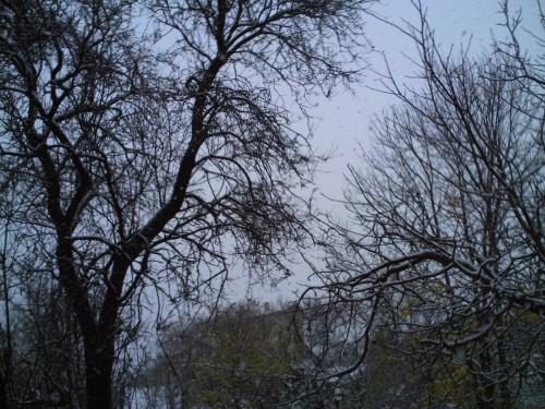 décembre 2009 014.jpg