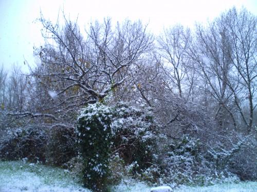 décembre 2009 010.jpg