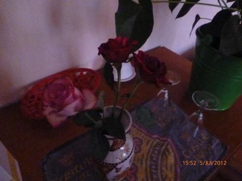 fleurs anni 2012 005.jpg