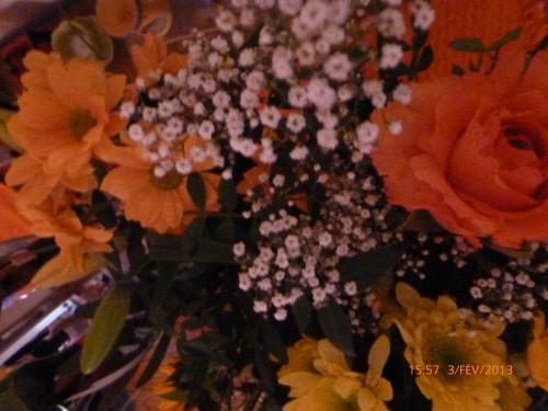 bouquet du 3 février 2013 003.jpg