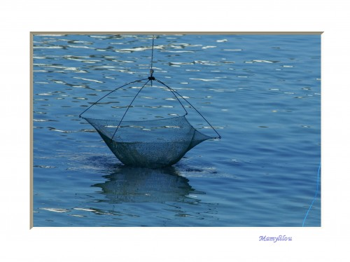 20100622_56 filet de pêche.jpg