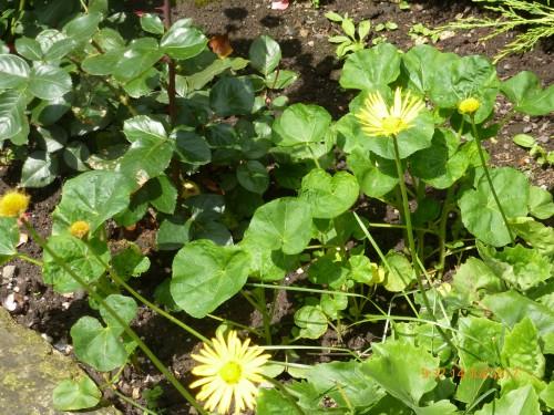 roanne -st quentin 13-14 juillet 2012 037.jpg