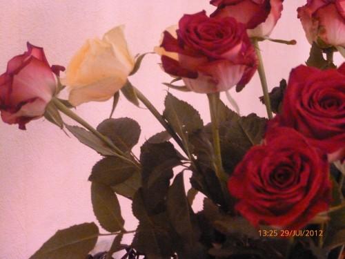 ste bouquet 28 juillet 2012 002.jpg
