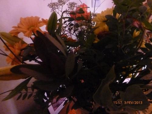 bouquet du 3 février 2013 004.jpg