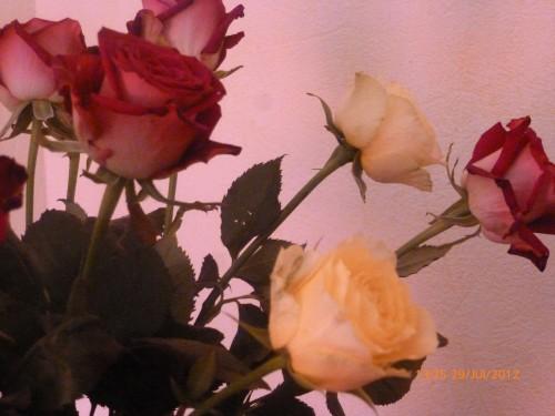 ste bouquet 28 juillet 2012 004 hf.jpg