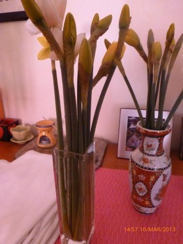 impots bouquet 10 mars 2013 005.jpg