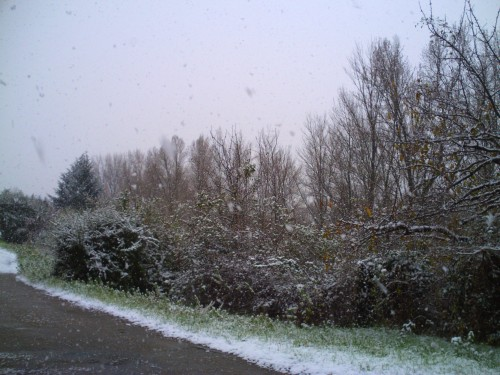 décembre 2009 011.jpg
