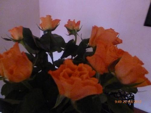 bouquet 22 juillet 2012 002.jpg